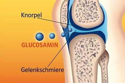 Glucosamine tự nhiên của cơ thể có trong các sụn khớp
