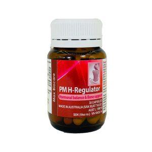 PM H-Regulator